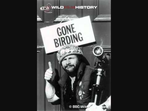 Bill Oddie - Nothing Better To Do