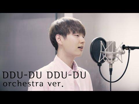 BLACKPINK(블랙핑크) - '뚜두뚜두 (DDU-DU DDU-DU)' (Cover By Dragon Stone)
