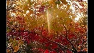 вірші про осінь Ліни Костенко.wmv(читає Лев Луцкер., 2010-05-15T14:55:52.000Z)