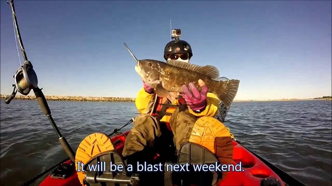 Tautog fishing cape henlopen state park de oct 15 for Cape henlopen fishing report