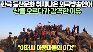 한국 등산문화 취재나온 외국방송인이 등산하다가 감격한 …