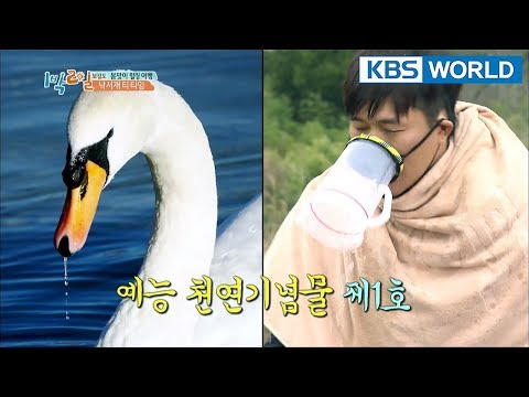 He's Korea's entertainment monument. [2Days & 1Night Season 3/2018.04.08]