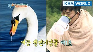 Video He's Korea's entertainment monument. [2Days & 1Night Season 3/2018.04.08] download MP3, 3GP, MP4, WEBM, AVI, FLV April 2018