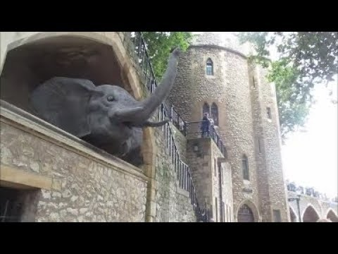 TRAVEL VLOG 8 │RETURN TO THE TOWER │TORTURE, TRAGEDY & HISTORY