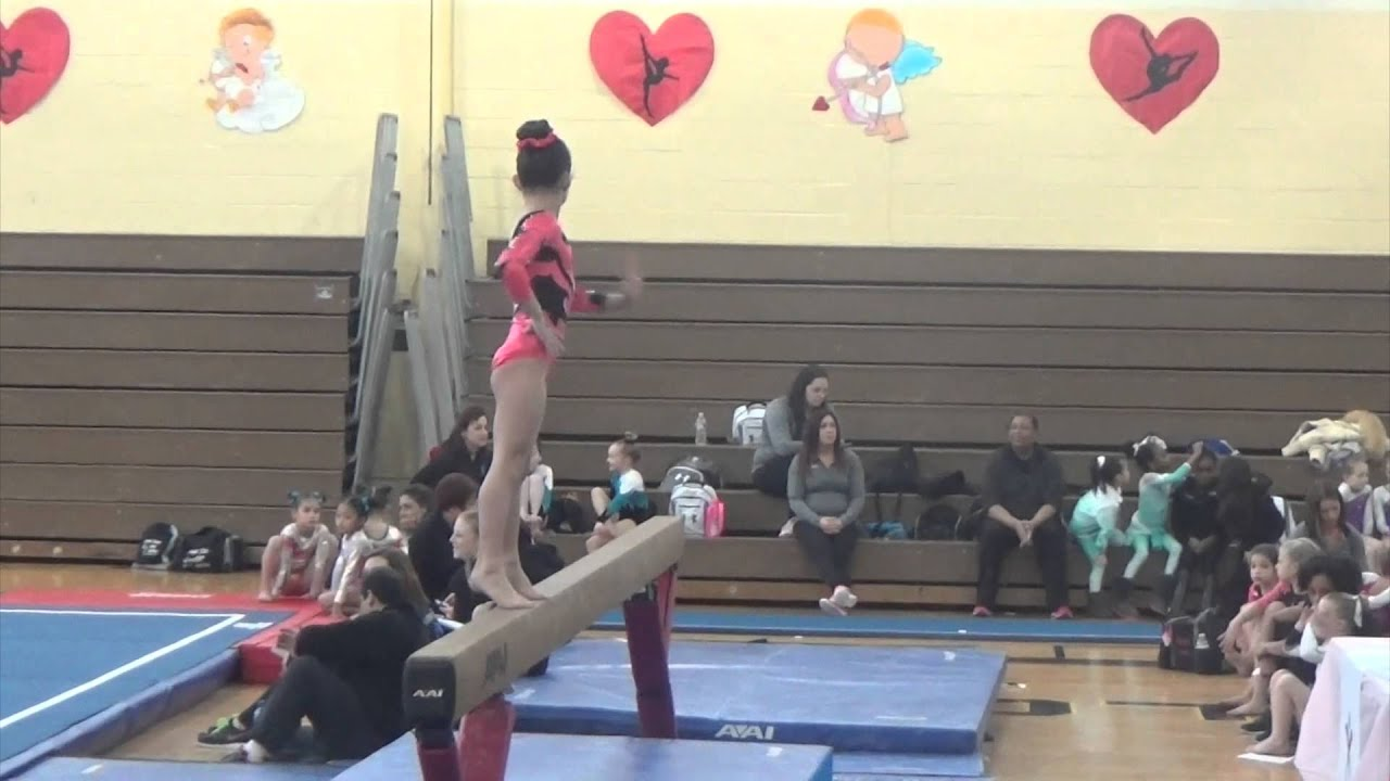 2015 level 3 state meet michigan