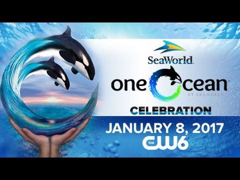 SeaWorld's 'One Ocean' Celebration