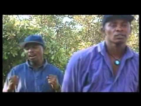 Masimba Amwari Tongai Moyo & Utakataka Express