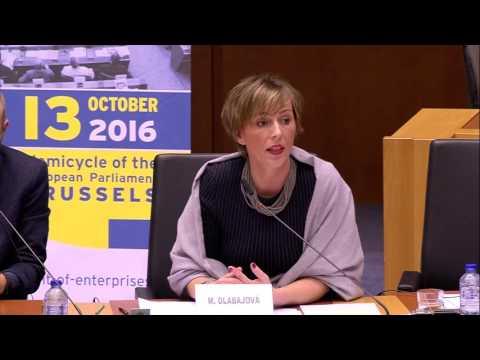 Martina Dlabajová, European Parliament