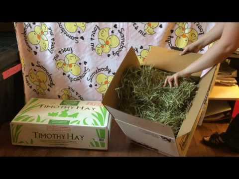 Small Pet Select Hay Comparison