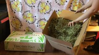 hay review d28 small pet nutrition coupon code