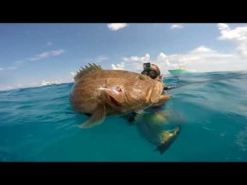 bahamas-bonefishing-&-spearfishing-2018