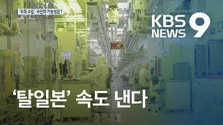 불산, 수입선 다변화·국산 개발…'탈일본' 속도 / KBS뉴스(News)