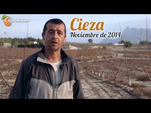 El Melocotón de Andrés EP01 - #CiezaMelocotón