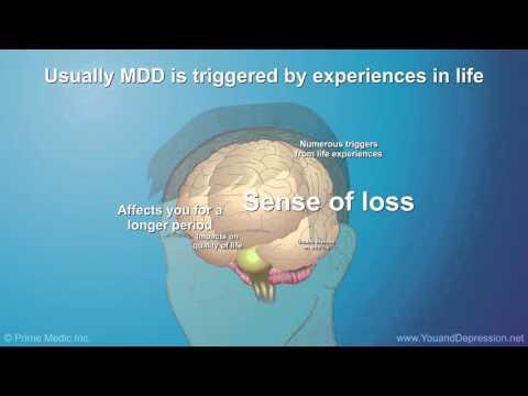 Understanding Major Depressive Disorder