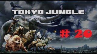 Tokyo Jungle Ps3 ( Parte 20 Leones, Dinosaurios :D, Actos y un Epic Fail  !!! ) Gameplay.