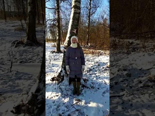 Изображение предпросмотра прочтения – ЛилияКолесникова читает произведение «Пороша (Еду. Тихо. Слышны звоны…)» С.А.Есенина