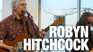 Watch Robyn Hitchcock What You Is video