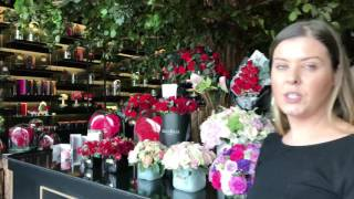 A Visit To Forever Rose Citywalk   Dubai