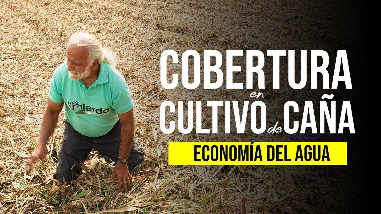 LA IMPORTANCIA DE LA COBERTURA DE SUELO (Economía del Agua) | Jairo Restrepo Rivera