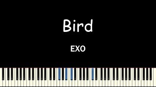 EXO(엑소) - BIRD(Piano Cover)(피아노 커버)