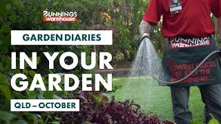 Gardening in October | Queensland | Bunnings Garden Diary