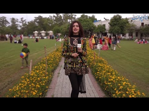Watch entertaining video of people of Lahore with Kanwal Aftab