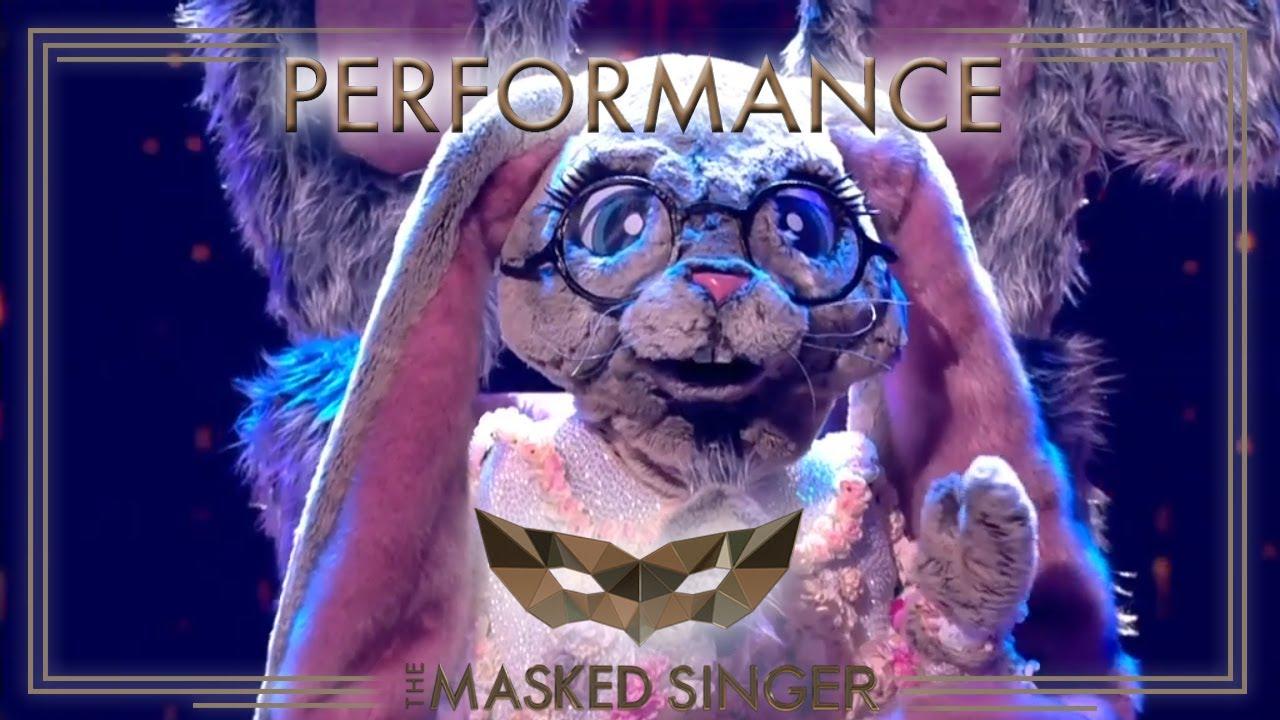 Masked Singer Hase
