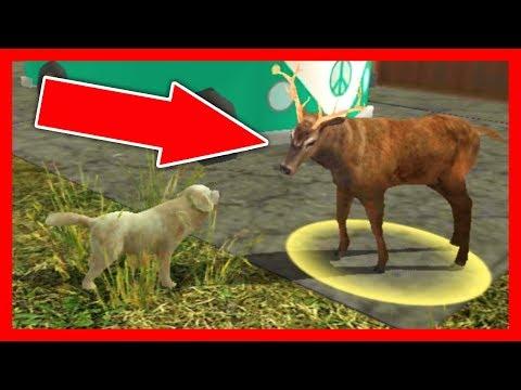 СИМУЛЯТОР СОБАКИ #3 СКОРО БУДЕТ ЩЕНОК в Dog Sim