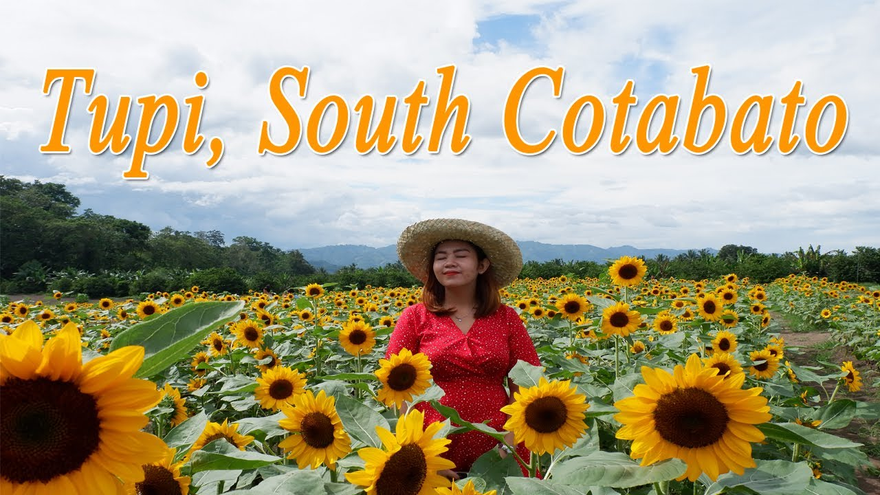 DOLE PINEAPPLE PLANTATION + MARIANO'S BLOOMING AGRI-TOURISM PARK | SOUTH COTABATO