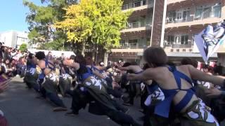 20141122長崎大学突風学祭「ソーラン節」② thumbnail