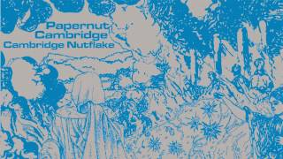 07 Papernut Cambridge - Listen to It Rain All Day [Gare du Nord Records]