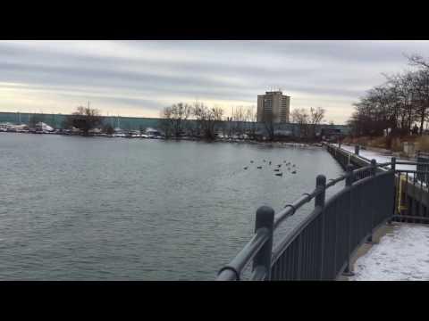 Port Credit. Mississauga, Feb  2017