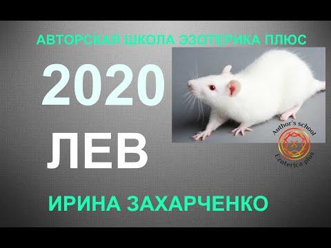 ♌ЛЕВ. Гороскоп на 2020 год. Прогноз на 12 домов гороскопа. ТАРО-ПРОГНОЗ.