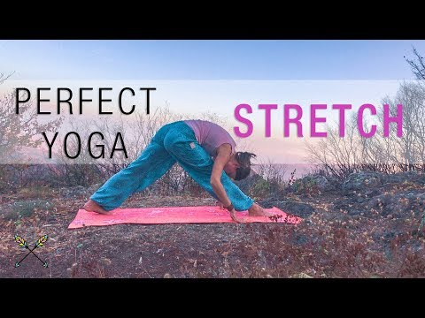 Yoga Stretch ☀ | 20 Minute Full Body Stretching for Sore Muscles and Flexibility ☀