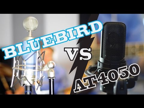 Blue Bluebird vs AT4050 Shootout