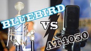Blue Bluebird vs AT4050 Shootout
