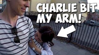 My life in Sweden #6 - Charlie bit my arm! (in Östersund)
