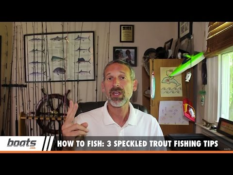 How to Fish: 3 Speckled Trout Fishing Tips