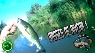 BASSES DE RIVERA 1// BASS OF RIVER 1