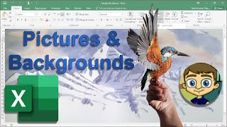Adding Pictures And Backgrounds Into Excel