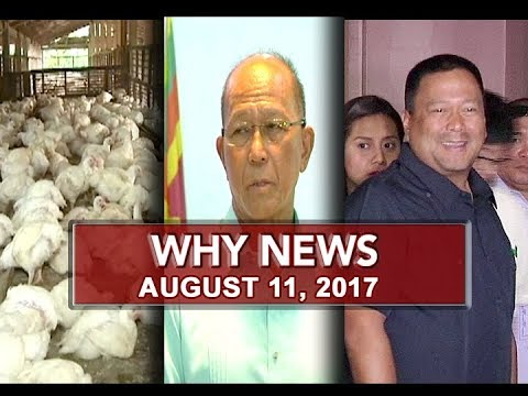 UNTV: Why News (August 11, 2017)