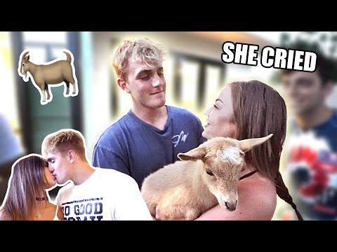 Thumbnail: BUYING MY WIFE HER DREAM PET