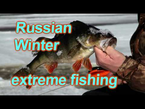 Зимняя рыбалка на о.Воже. Russian Winter extreme fishing.