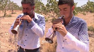 Turkish Clarion: Zurna - Barak Havası - Haco Gelin