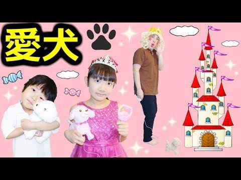 ★「お姫様&王子様&パパ子プリンセスの愛犬散歩!」高級おやつ登場~!★Royal Dog walking★