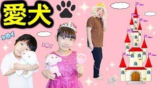 ★「お姫様&王子様&パパ子プリンセスの愛犬散歩!」高級おやつ登場~!★Royal Dog walking★ thumbnail