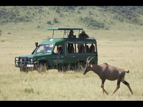 5 Days Tanzania Budget Camping Safari Joining Others Manyara Serengeti Ngorongoro $900.- USD