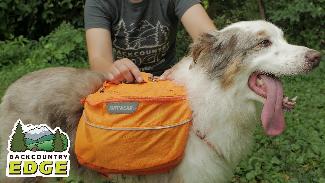 Ruff Wear Approach Pack - Dog Backpack - YouTube bec09316da5c3