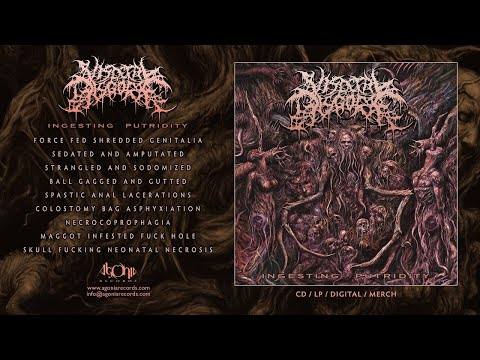 VISCERAL DISGORGE - Ingesting Putridity (Remaster) [Official Stream]