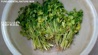 Cover images फ़र्टिलाइज़र तैयार  करे 24 घंटो में  (Tonic for Plants) Make organic Fertilizer in 24 Hrs